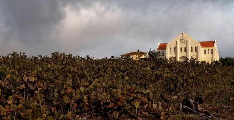 This is the view from the back of our house. A small church perched on top of a hill of Cacti