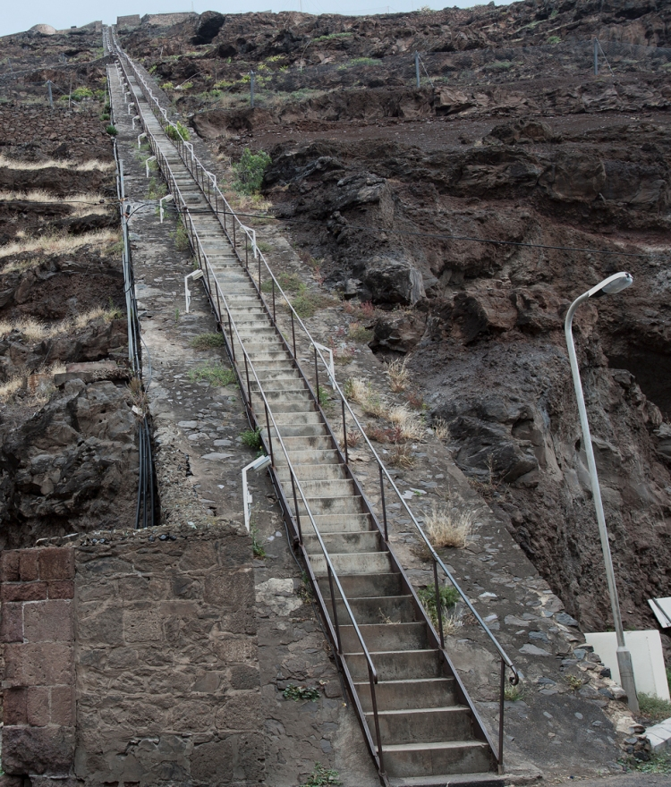 The gruelling and inspiring Jacobs Ladder. 200m of pain!