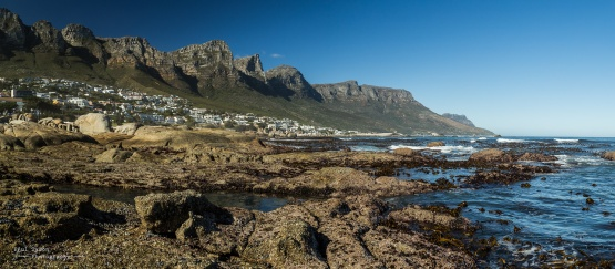Rockpools and Kelp forests at Camps Bay