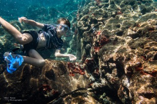 Oliver loves snorkeling and definitely takes after his Mum and Dad with a love of the ocean,.